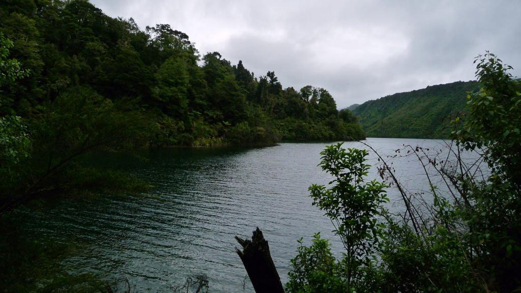 The Lake Waikaremoana Great Walk   The Missing Year